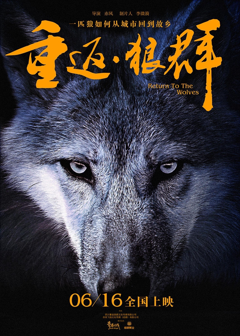Return to the Wolves