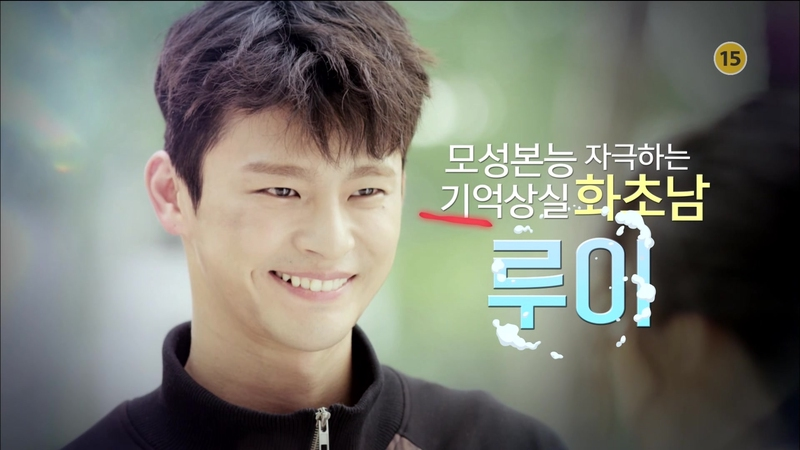 Top 5 Most Adorable Male Leads (2016 KDrama Version)